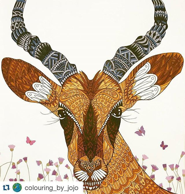 impala Magical Animals Pinterest Impalas Zentangle and