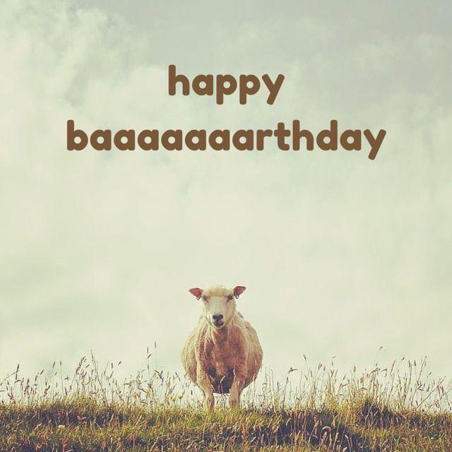 Schaap Congratulations Verjaardag Verjaardag Citaten En