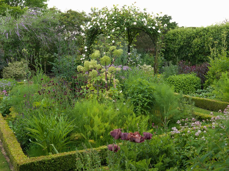 Town Place in July Garden design, Country gardening, Places