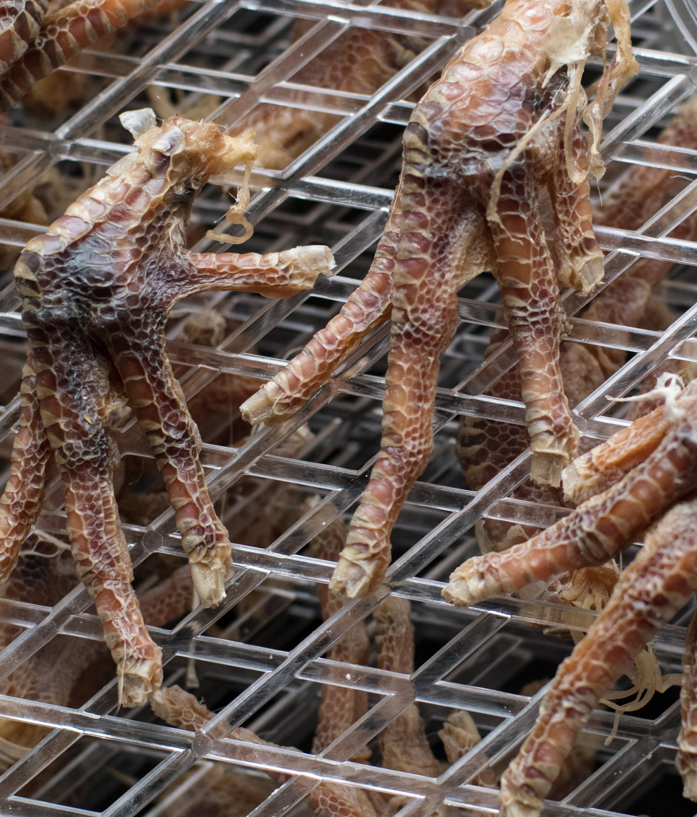 How To Make Dried (dehydrated) Chicken Feet For Dogs