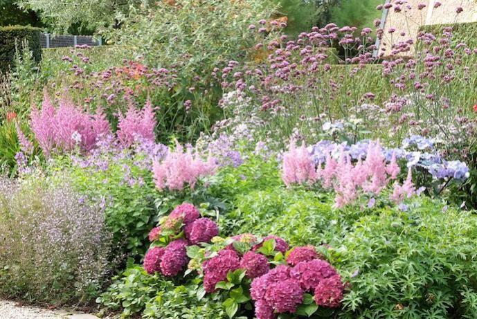 Verbazingwekkend De mooiste borderplanten en -combinaties | garden {landscape and VI-78