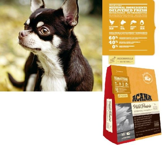 Acana Owned By Champion Petfoods Offers A Wide Range Of Products
