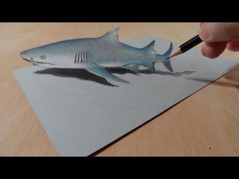 Drawing a Gray Shark, 3D Illusion - YouTube