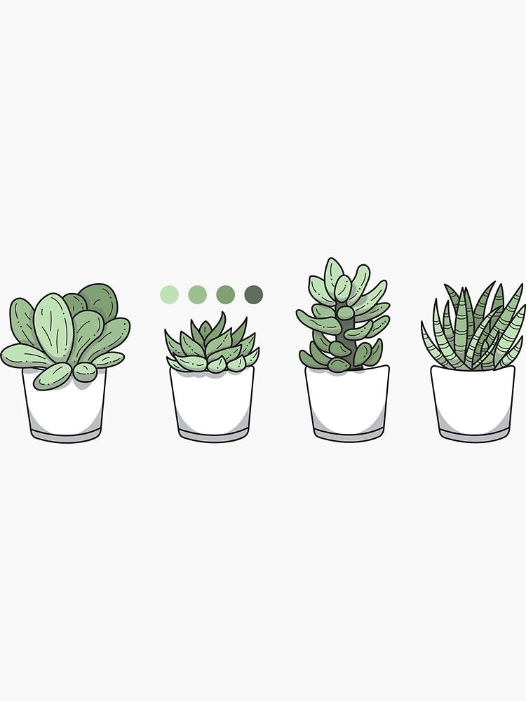 Tiny Potted Succulents And Gradient Sticker By Bountifulbean In 2020 Plant Drawing Succulents Wallpaper Succulent Doodle