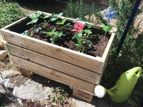 Construire sa jardinière en palettes jardinage Pinterest DIY