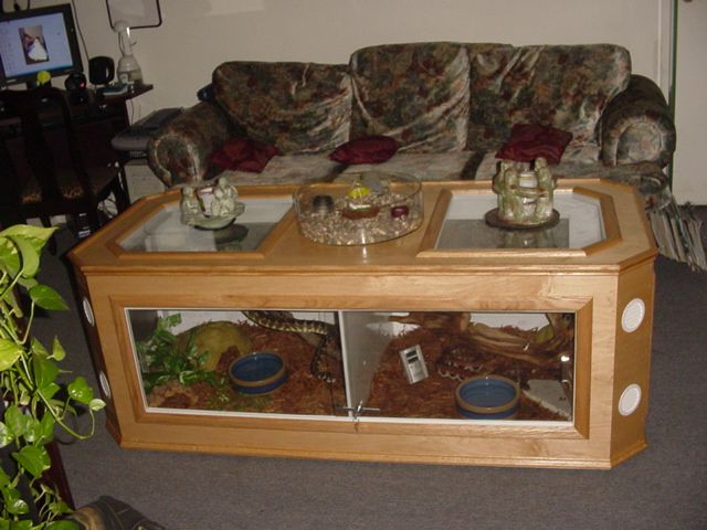 Coffee table terrarium reptile room pinterest for Coffee table enclosure