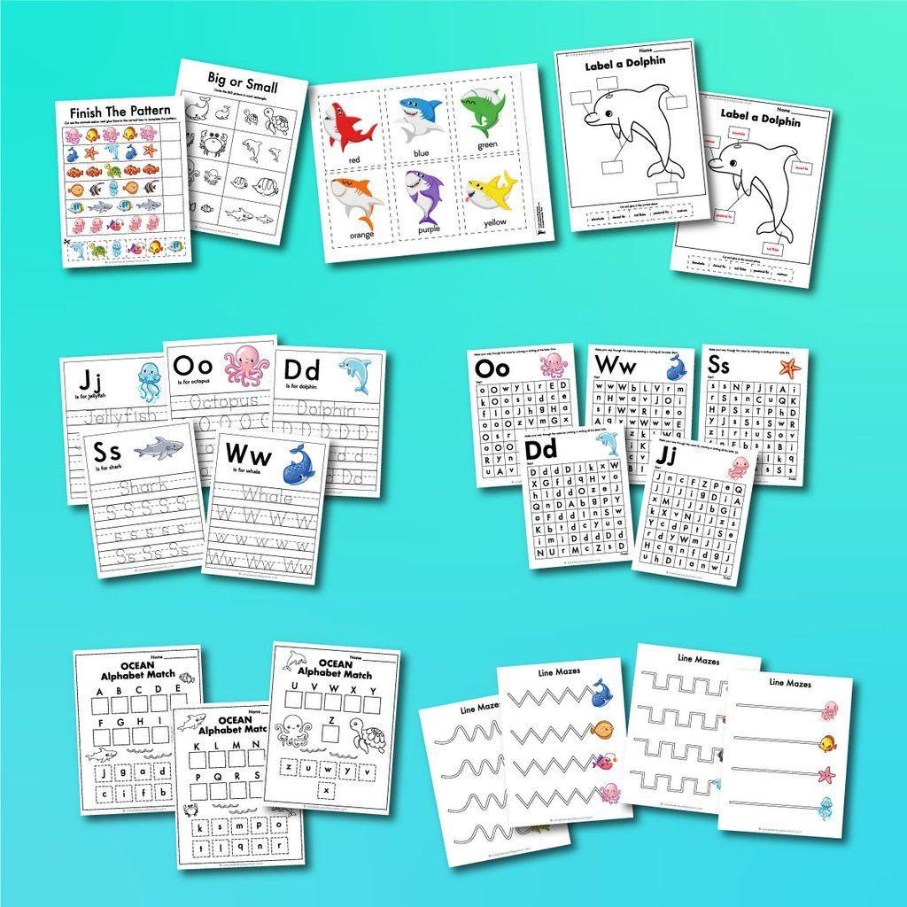 Ocean Animal Worksheets In