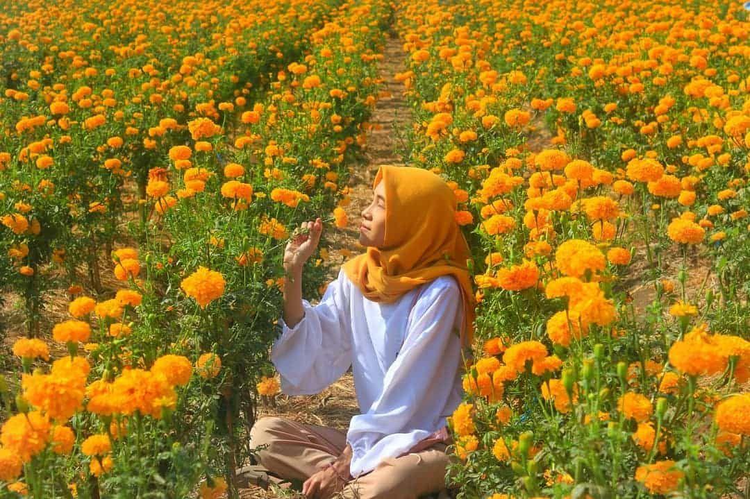 Taman Bunga Di Ubud Bali