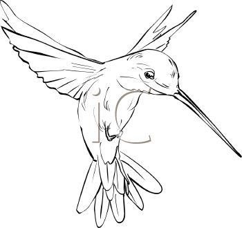 Simple Hummingbird Outline Tattoo Idea Tattoo Inspiration In 2019