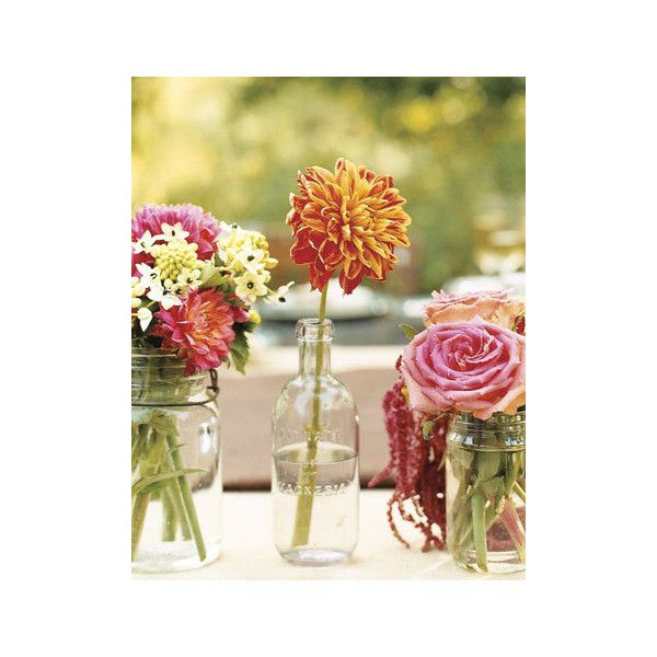 D is for Dahlias Flowers 101 found on Polyvore