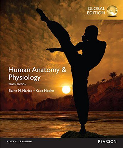 Human Anatomy Physiology 10th Edition Pdf Download E Book