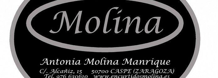 Encurtidos Molina - Logotipo