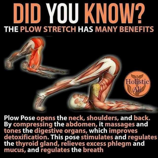 You can only do these stretching exercises after you have skinned your skin -  You can only do these...