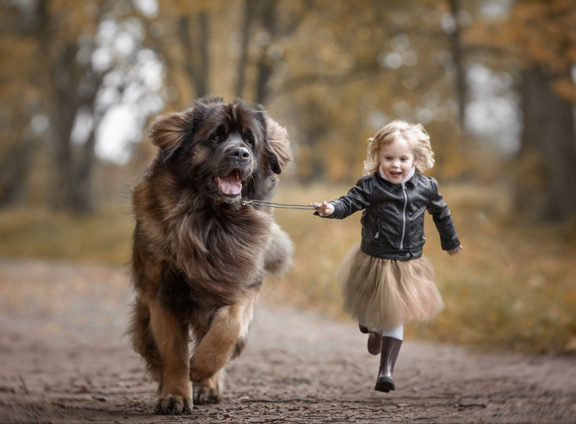 Nothing Says Love Like A Tiny Child With A Big Dog Dog Animal - Tiny children and their huge dogs photographed in adorable portraits by andy seliverstoff