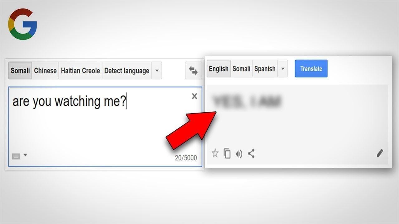 11 Things To Never Type Into Google Translate Language Sign Language Google Translate