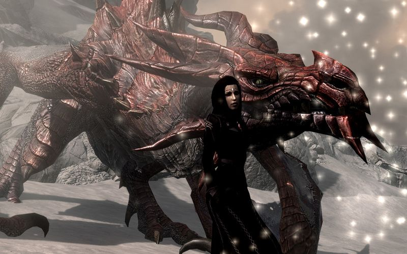 Odahviing And A Girl Skyrim Dragon Pictures Fantasy Dragon