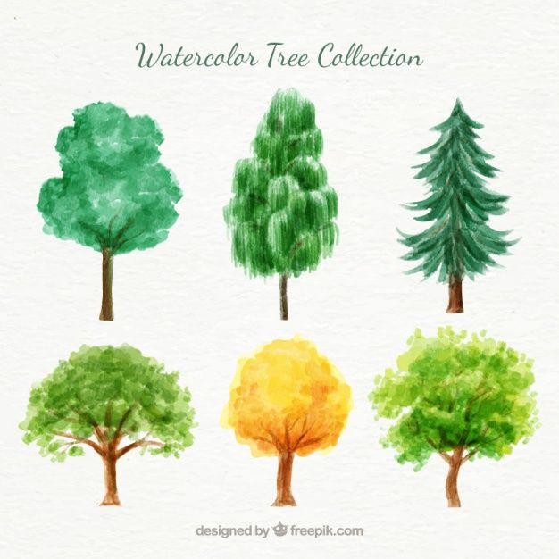 Watercolor Variety Of Trees Pack Free Vector Free Vector Freepik Vector Freewatercolor Freetree Watercolor Trees Tree Watercolor Painting Watercolor Tree