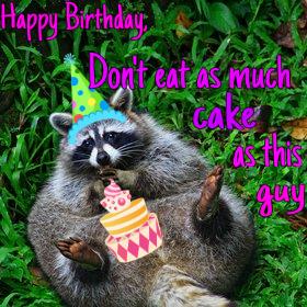 Resultado de imagen para raccoon birthday
