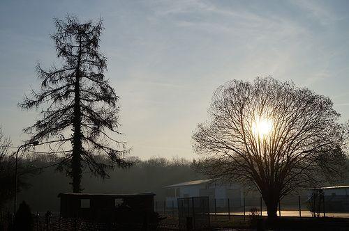 Die Nebel von Avalon sind zurück! Und auf der anderen Seite haben sich die Nebel gelichtet. (Foto von heute morgen.)