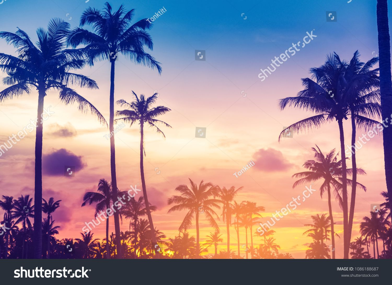Copy Space Of Silhouette Tropical Palm Tree With Sun Light On Sunset Sky And Cloud Abstract Backgro Abstract Backgrounds Sky And Clouds Nature Travel Adventure Tropics palm trees sunset clouds sky