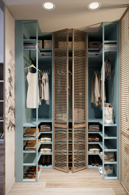50 Dreamy Dressing Rooms To Drool Over Best Closet Organization Storage Closet Organization Bathroom Organization Diy