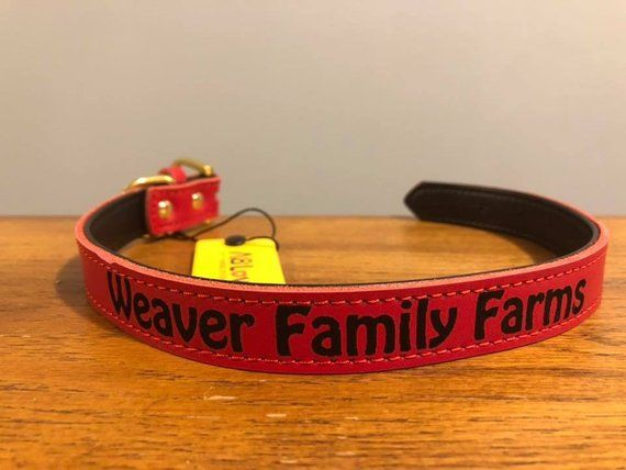 6cd653df0bb These are custom laser engraved leather dog cat collars! When you order  please let