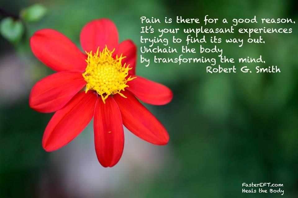 El dolor está ahí por una buena razón. Se trata de sus experiencias desagradables que tratan de encontrar su salida. Desencadene el cuerpo al transformar la mente. Robert G. Smith, Creator of FasterEFT