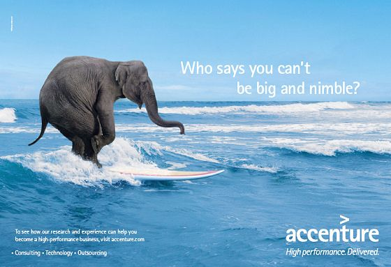 Consulting firm Accenture presents a surfing elephant TV ad | Cute