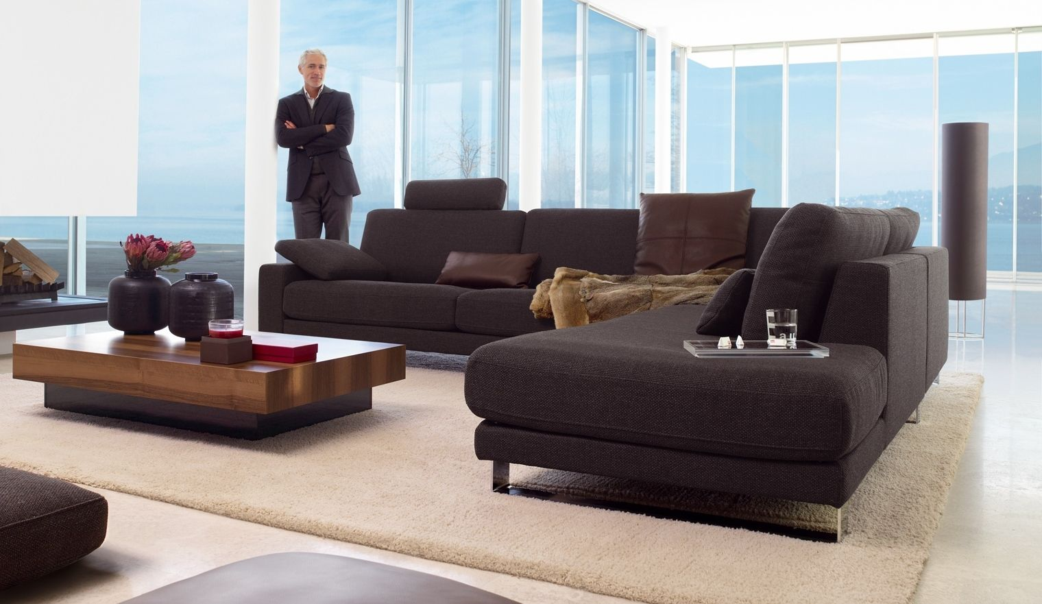 rolf benz ego in dark fabric plaisier we love rolf. Black Bedroom Furniture Sets. Home Design Ideas