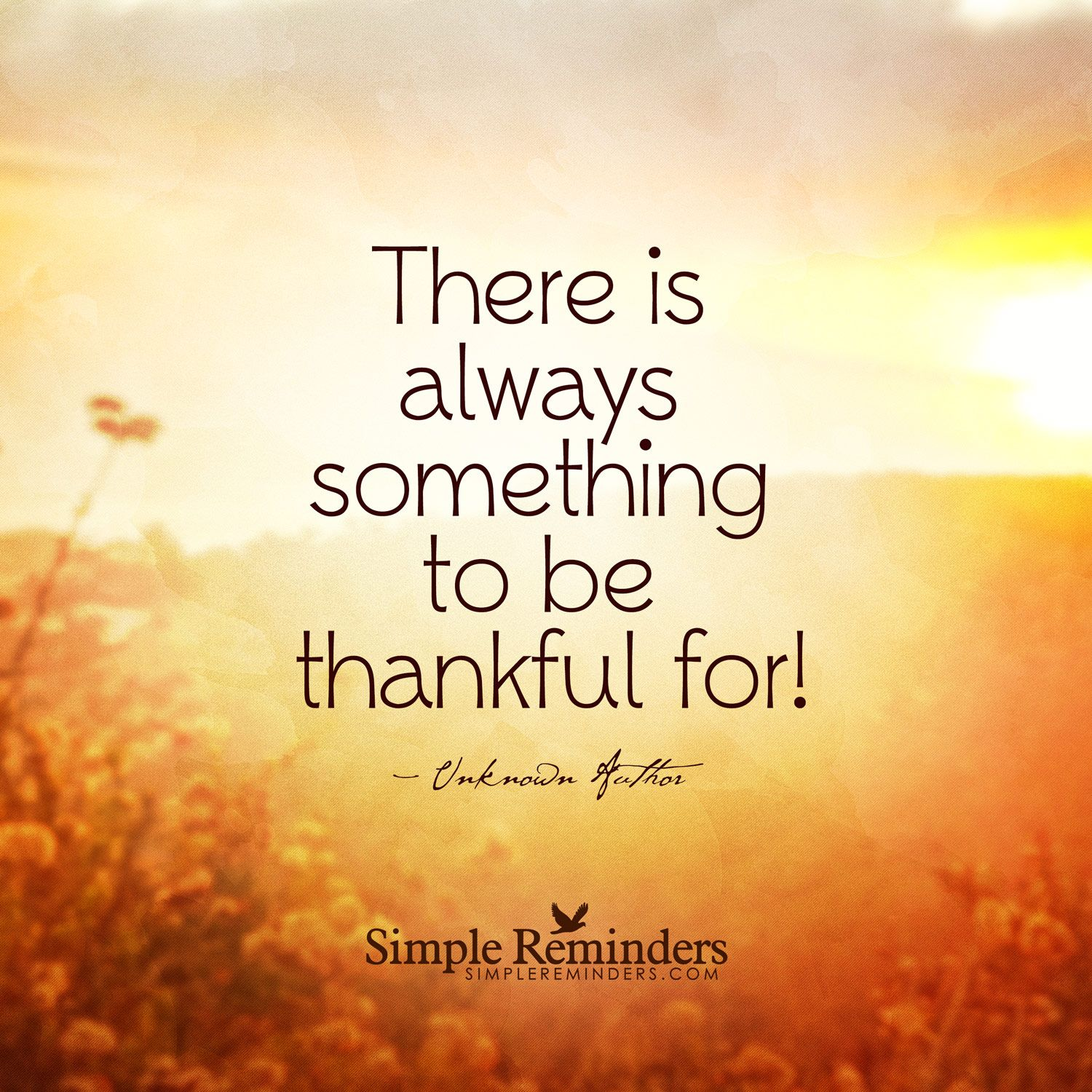 There is always something to be thankful for!— Unknown