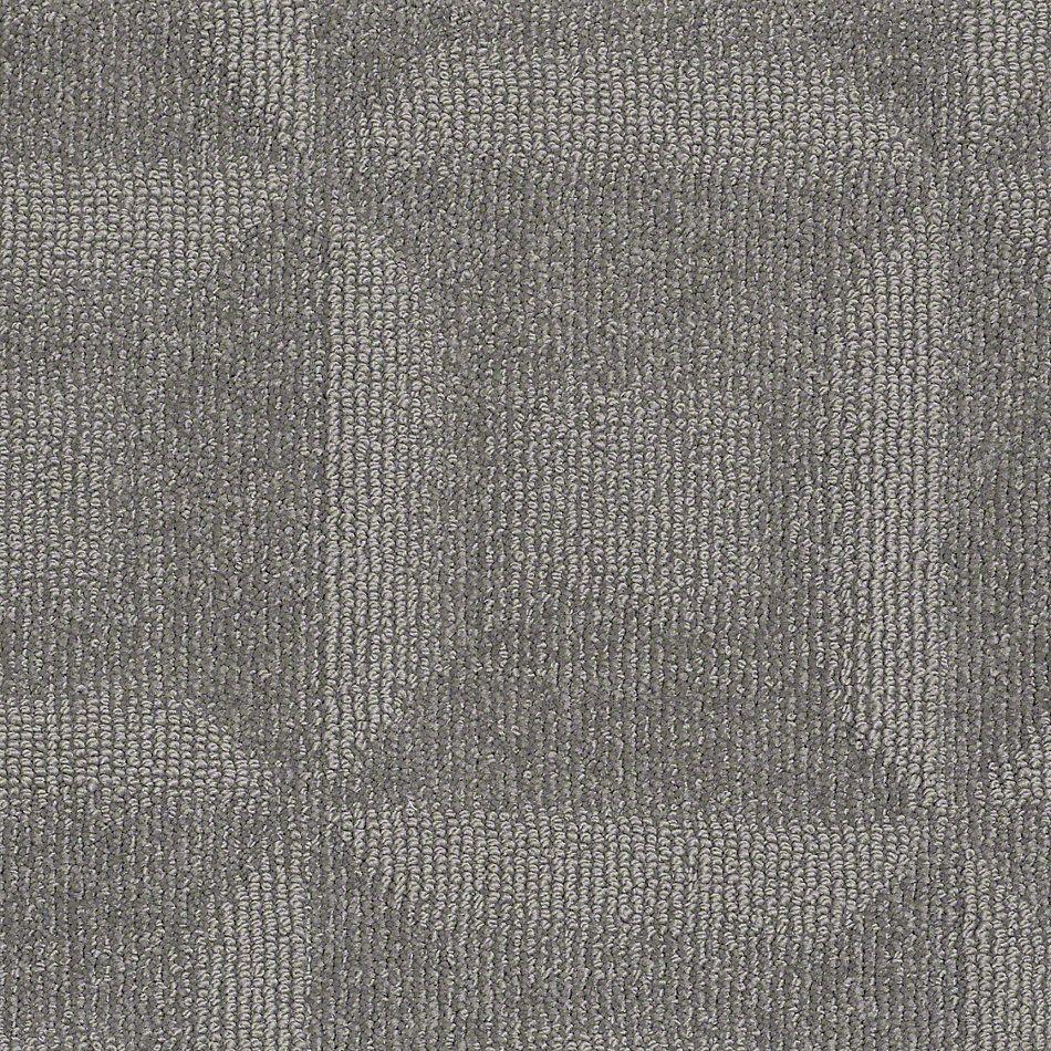 Shaw Carpet Loop Amp Pile Positive Negative Color