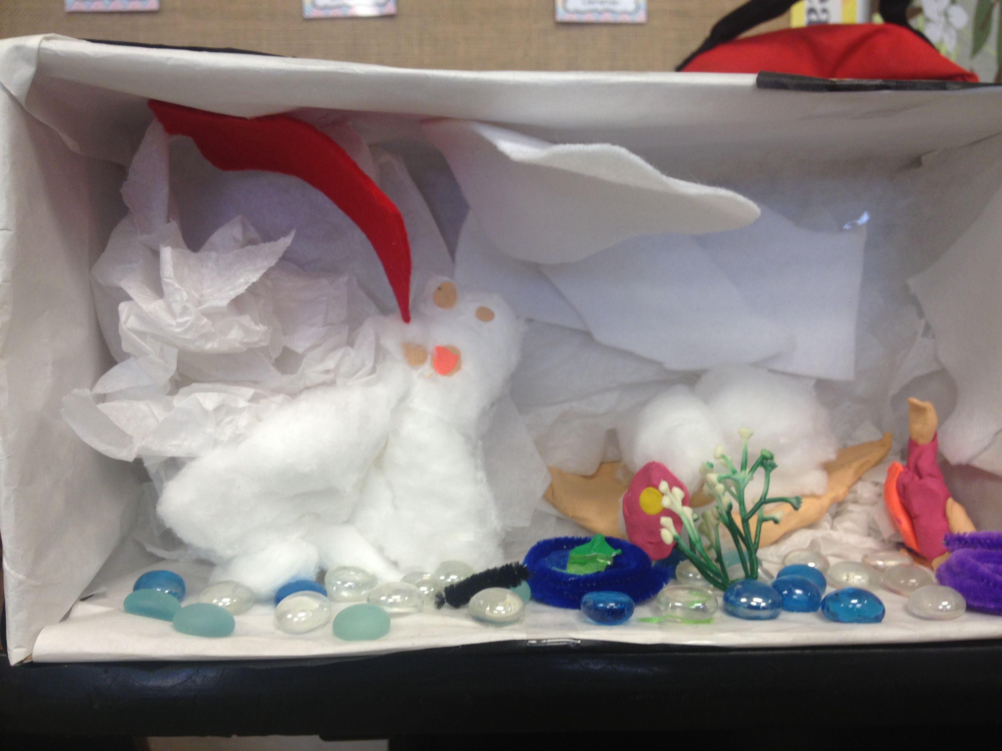 We Made A Tundra Biome In Kindergarten
