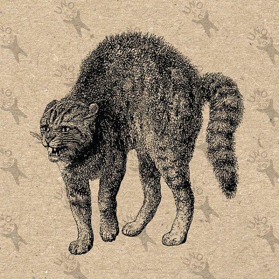 Angry cats by Tatiana Vorontsova on Etsy