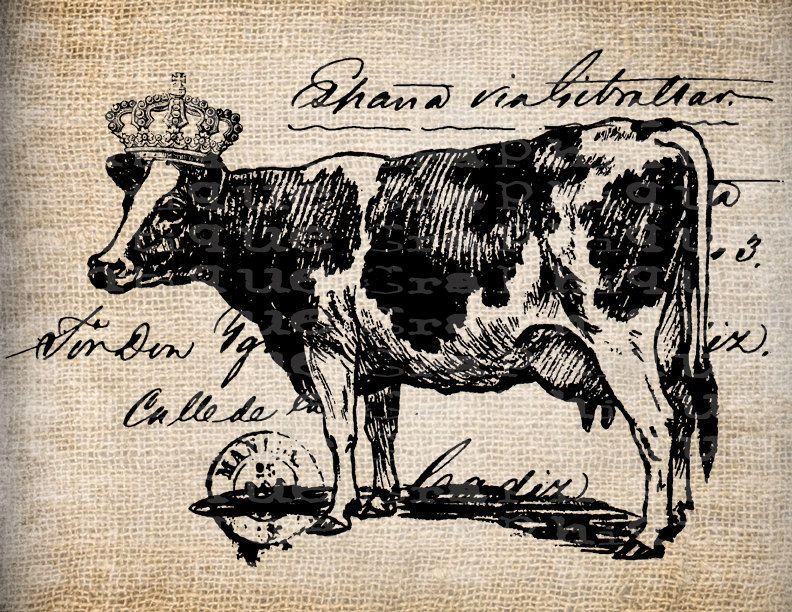 Картинки для декупажа монохром корова