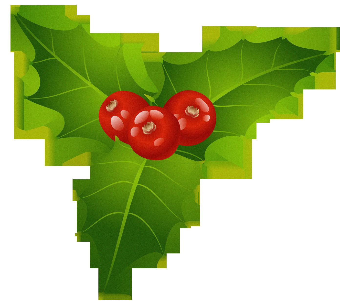 Christmas Mistletoe Png Clipart Christmas Clipart Free Christmas Wallpaper Free Christmas Clipart