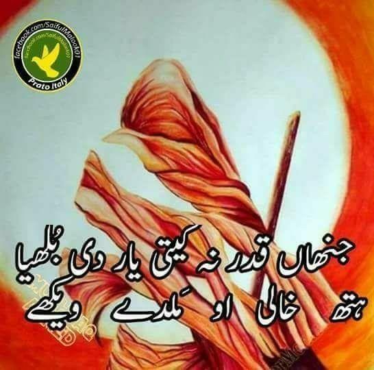 Pin by Ah San Jamil on PUNJABI N SARAIKI | Best urdu ...