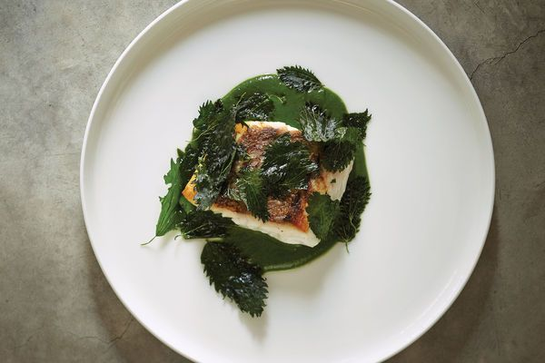 Seared Snapper with Nettle Sauce Recipe | SAVEUR