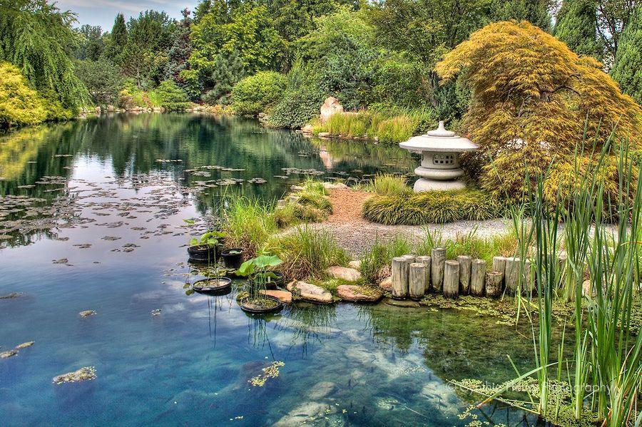 Botanical Garden Virginia