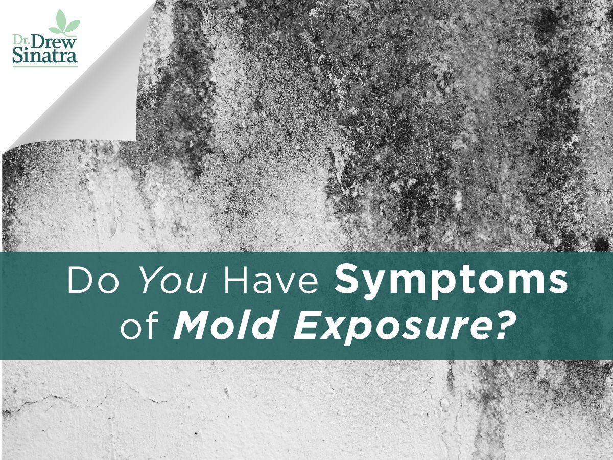 Get Dr Drew Sinatra S Top Recommendations For Recognizing The Symptoms Of Mold Exposure And How To Test Remove From Your Body