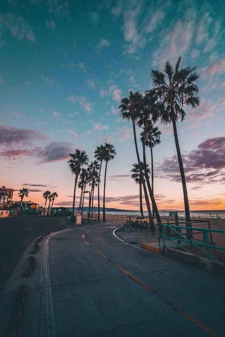 Grebil En Twitter Seguir Alohamauivegan Para Inspo Playa En 2020 Fondos Para Fotos Fondos Para Fotos Tumblr Paisaje De Fantasia