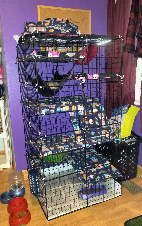 C C Ferret Cage Ferret Cage Chinchilla Cage Hedgehog Cage