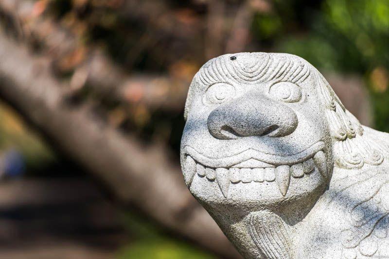 写真 韓国の狛犬 なぜか近所の公園にあります
