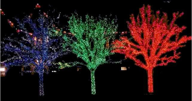 Love this Outdoor Christmas Lights Pinterest Outdoor