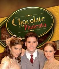 Novelas Brazilenas Pajinas De La Vida Chocolate Com Pimenta