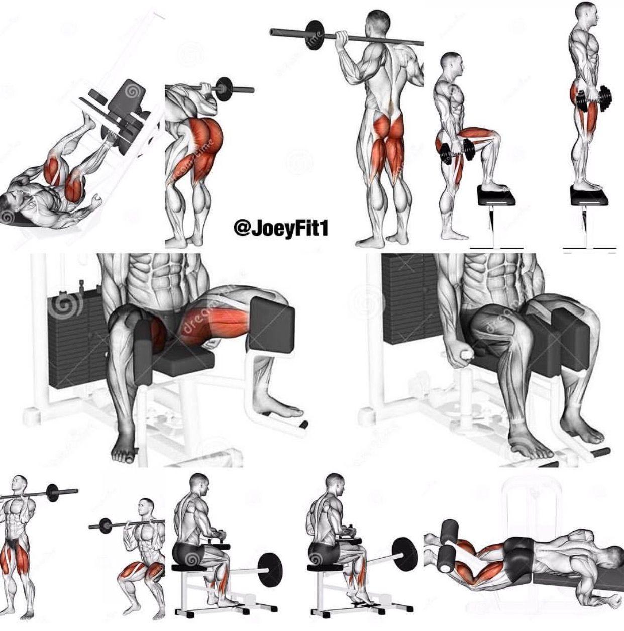 Pin By Stephen On Fitness And Beauty Leg Workout Strength Workout Gym Workout Chart