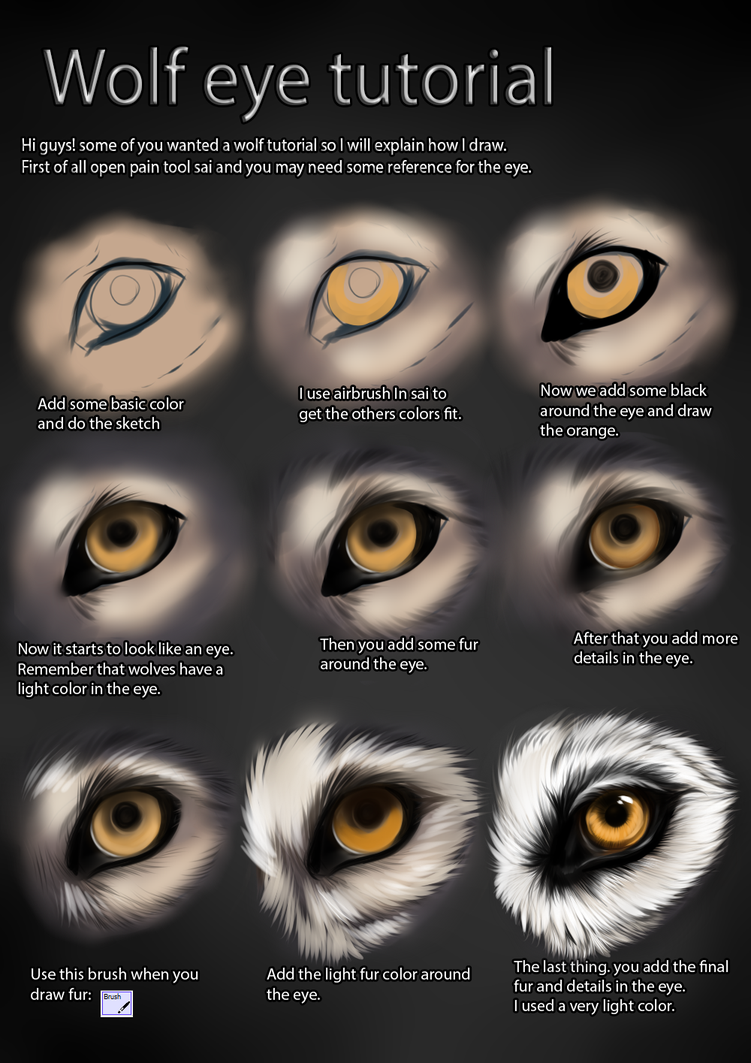 Coloring Techniques For Paint Tool Sai Animal Eyes