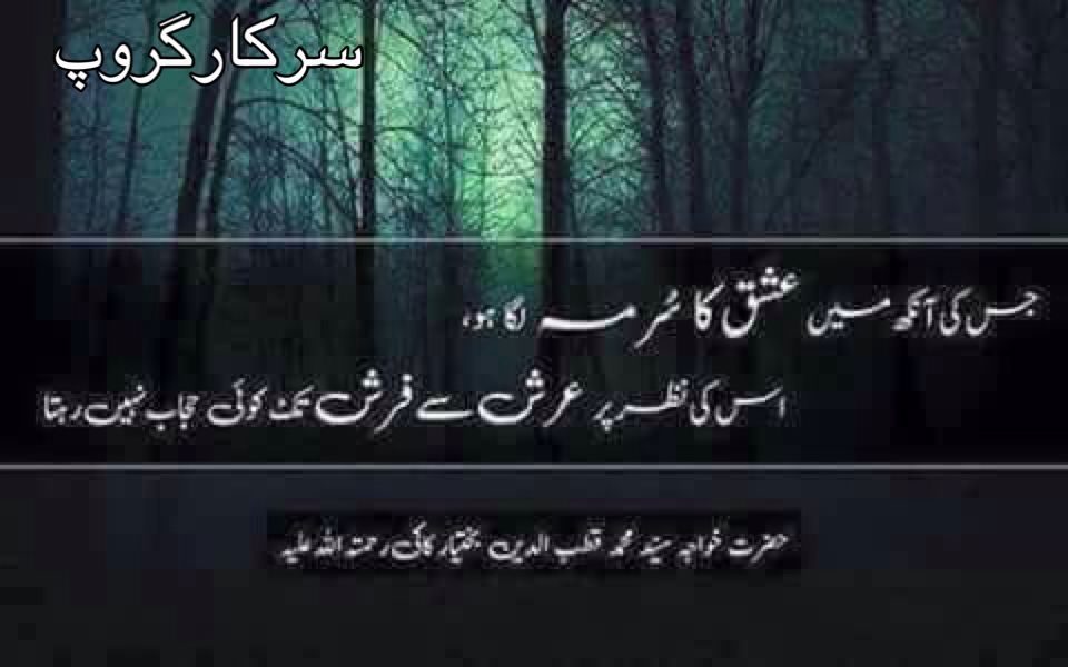 Pin by Poetry Mughal on سرکارگروپ Quotes from novels