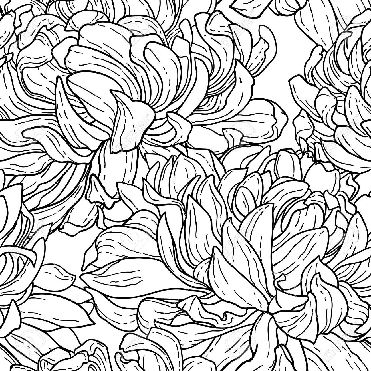 flowers line drawing -...