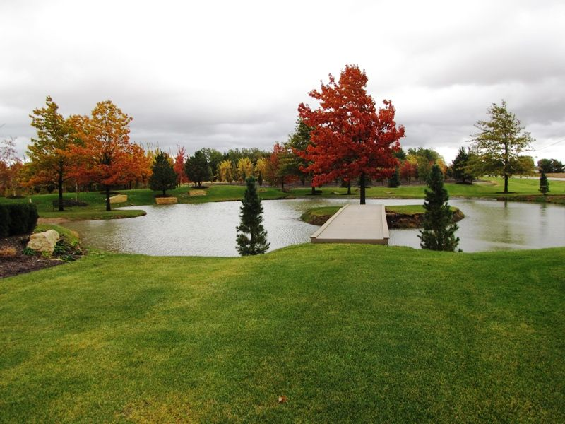 Pin By Peggy Read On Water Features Pond Landscaping Ponds Backyard Backyard Water Feature