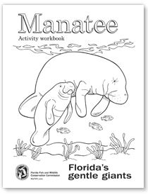manatee coloring pages manatee activity workbook